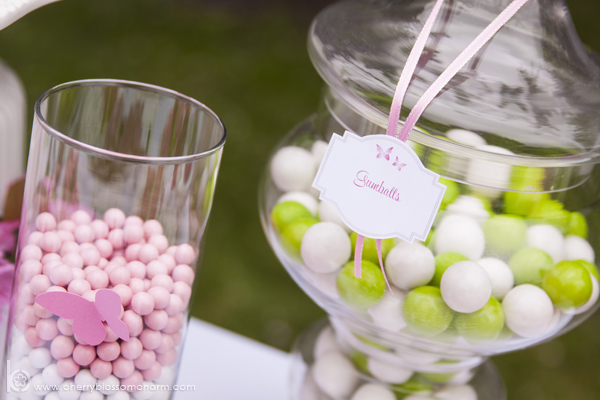 Pink Green and White Candy