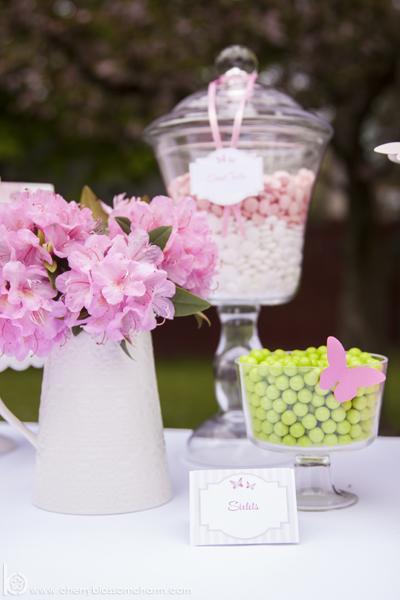 Butterfly Garden Birthday Party